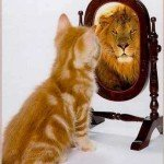 Perception is reality self image test cat lion